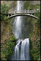 Benson Bridge and Multnomah Falls. Columbia River Gorge, Oregon, USA (color)