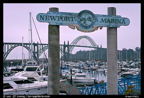 Newport marina and sign, foggy sunrise. Newport, Oregon, USA (color)