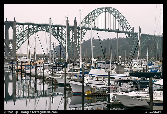 Marina and Yaquina Bay Bridge. Newport, Oregon, USA (color)