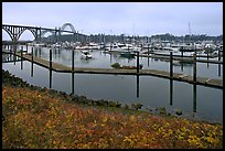 Newport harbor. Newport, Oregon, USA (color)