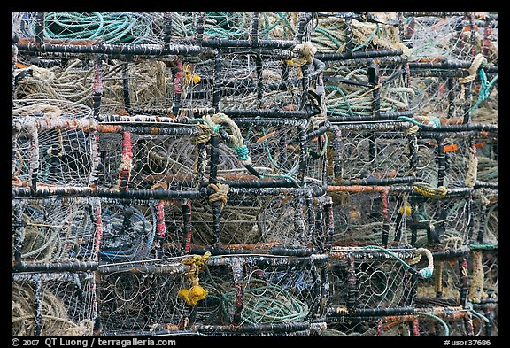 Close-up of crab traps. Newport, Oregon, USA