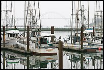 Commercial fishing boats and Yaquina Bay in fog. Newport, Oregon, USA