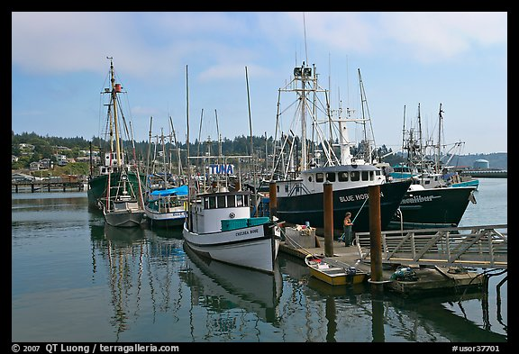 picture photo commercial fishing boats newport oregon usa