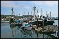 Commercial fishing boats. Newport, Oregon, USA (color)