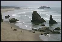 Beach and rock needles. Bandon, Oregon, USA (color)