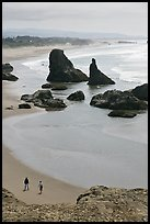 Beach and seastacks at Face Rock. Bandon, Oregon, USA