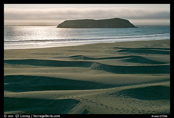 Sand dunes and island, Pistol River State Park. Oregon, USA (color)