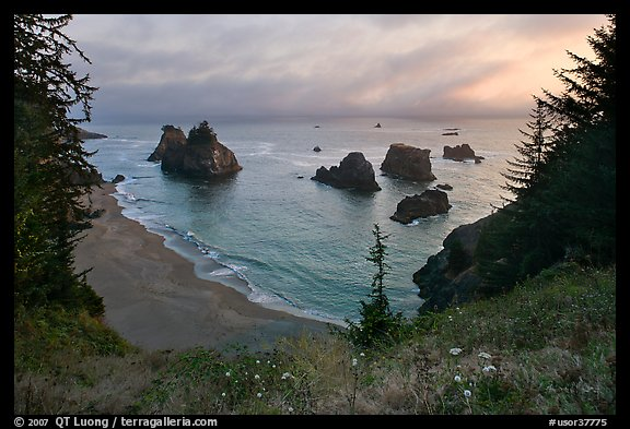 Coastline at sunset, Samuel Boardman State Park. Oregon, USA