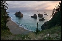 Coastline at sunset, Samuel Boardman State Park. Oregon, USA (color)