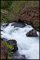 Water flowing from under basalt tube. Oregon, USA