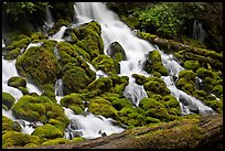 Mossy rocks and stream, North Umpqua river. Oregon, USA