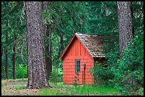 Union Creek red cabin in forest. Oregon, USA