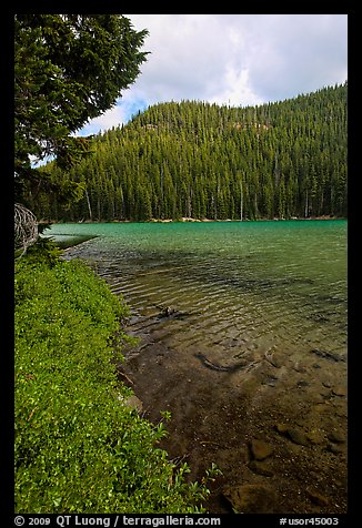 Clear emerald waters, Devils Lake. Oregon, USA (color)