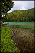 Clear emerald waters, Devils Lake. Oregon, USA ( color)