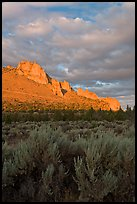 Sagebrush and ridge at sunset. Smith Rock State Park, Oregon, USA
