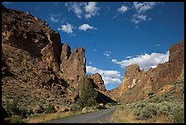 Scenic road below spires, Leslie Gulch. Oregon, USA ( color)