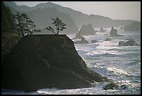 Coastline with rocks and seastacks, Samuel Boardman State Park. Oregon, USA
