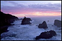Seastacks and surf at sunset, Samuel Boardman State Park. Oregon, USA ( color)