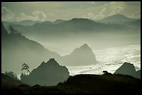 Rugged Coastline, late afternoon, Hamburg Mountain State Park. Oregon, USA ( color)