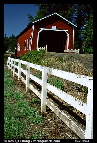 Fence and red covered bridge, Willamette Valley. Oregon, USA
