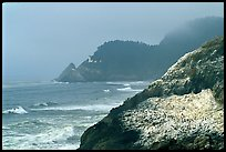 Rock with birds in fog,  Haceta Head in the background. Oregon, USA
