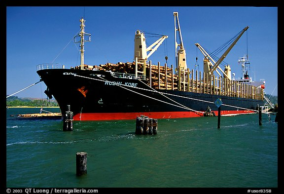 Cargo ship loading floated timber. Oregon, USA