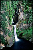 Toketee Falls  and wall of columnar balsalt. Oregon, USA