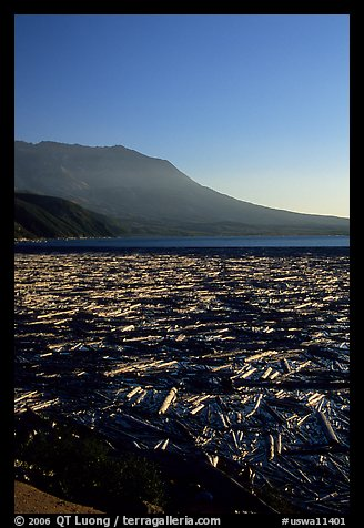 Layer of dead trees on Spirit Lake, and Mt St Helens. Mount St Helens National Volcanic Monument, Washington (color)