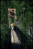 Woman hiking on suspension bridge, Lava Canyon. Mount St Helens National Volcanic Monument, Washington ( color)