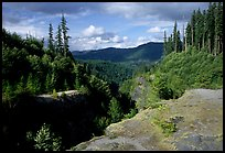 Forest and gorge, Lava Canyon. Mount St Helens National Volcanic Monument, Washington (color)