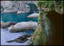 Sea caves and cliffs, Cape Flattery, Olympic Peninsula. USA ( color)
