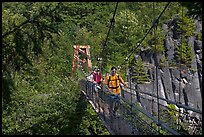 Hikers cross suspension bridge over Lava Canyon. Mount St Helens National Volcanic Monument, Washington ( color)