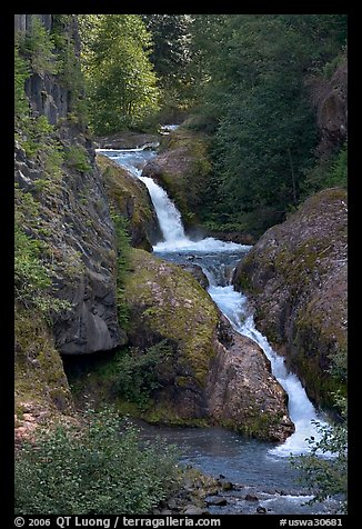Muddy River cascades in Lava Canyon. Mount St Helens National Volcanic Monument, Washington