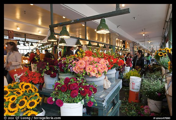 Flowers for sale in Main Arcade daystall,. Seattle, Washington (color)