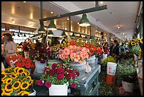 Flowers for sale in Main Arcade daystall,. Seattle, Washington ( color)