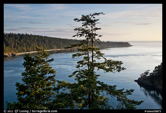 Deception Bay, Whidbey Island. Olympic Peninsula, Washington (color)