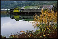 Wooden pier in autumn, Olympic Peninsula. Olympic Peninsula, Washington ( color)