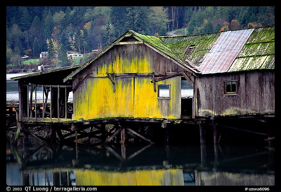 Old wooden pier, Olympic Peninsula. Olympic Peninsula, Washington (color)