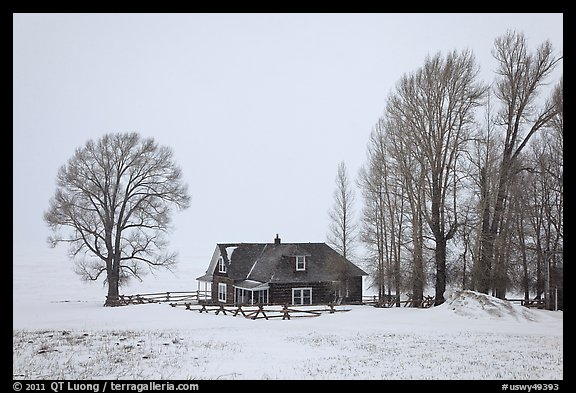 Miller House during snow storm, National Elk Refuge. Jackson, Wyoming, USA (color)