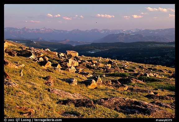 Alpine meadow and rocks, late afternoon, Beartooth Range, Shoshone National Forest. Wyoming, USA