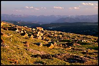 Alpine meadow and rocks, late afternoon, Beartooth Range, Shoshone National Forest. Wyoming, USA (color)
