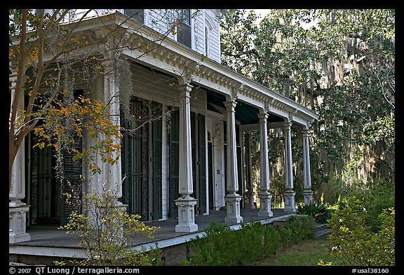 House and trees with Spanish moss in frontyard. Selma, Alabama, USA (color)