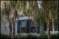 Spanish moss covered trees and windows. Selma, Alabama, USA ( color)
