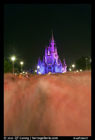 Blurred crowds and Cinderella Castle at night. Orlando, Florida, USA (color)