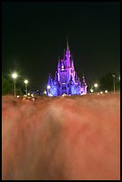 Blurred crowds and Cinderella Castle at night. Orlando, Florida, USA