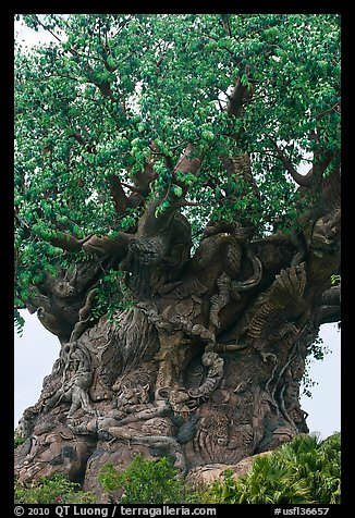 Sculpted tree of life, Animal Kingdom Theme Park, Walt Disney World. Orlando, Florida, USA (color)