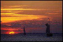 Sailboats and sun, sunset. Key West, Florida, USA ( color)
