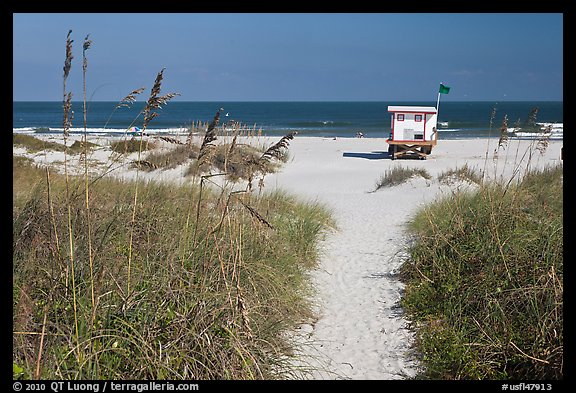Path, dune grass, and lifeguard platform, Jetty Park. Cape Canaveral, Florida, USA