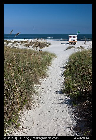 Sandy path leading to beach, Jetty Park. Cape Canaveral, Florida, USA (color)