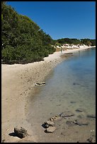 Beach on the Matanzas River, Fort Matanzas National Monument. St Augustine, Florida, USA ( color)
